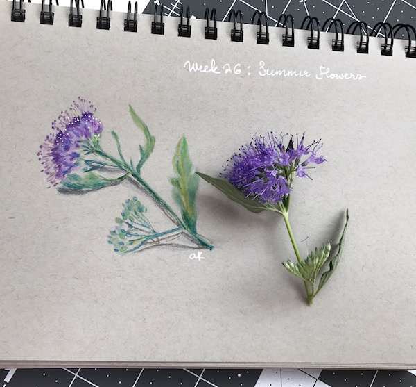 summer flower sketch- green rain art