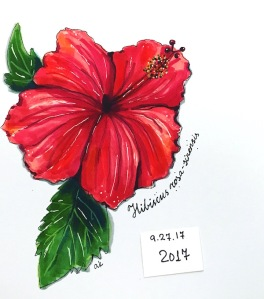 hibiscus green rain art 2017