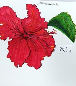 hibiscus greenrainart 2015