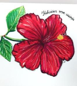 hibiscus greenrainart 2016