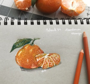 mandarin colored pencil sketch greenrainart