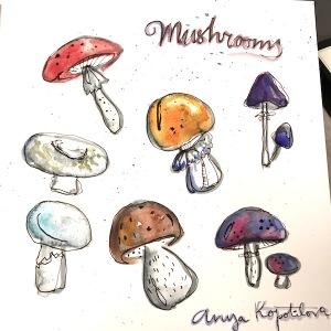 mushroom illustration pen and watercolor greenrainart