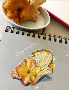 mushrooms from life colored pencils greenrainart