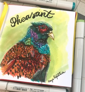 pheasant copic markers sketch greenrainart