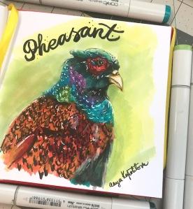 pheasant copic markers sketch greenrainart