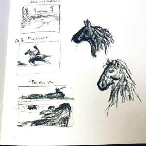 black beauty draft sketches greenrainart