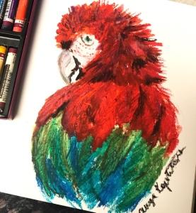 parrot oil pastel greenrainart